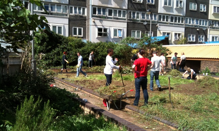 'Dig for the Dodd' at the community garden
